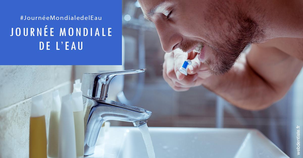 https://www.cabinetdentairedustade.fr/Journée de l'eau 2